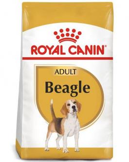 Royal Canin Beagle Adulto Seco