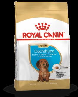 Royal Canin Dachshund Teckel Cachorro