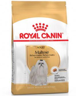 Royal Canin Maltés Adulto