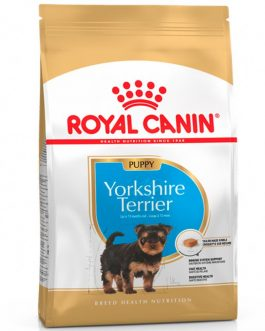 Royal Canin Yorkshire Terrier Cachorro